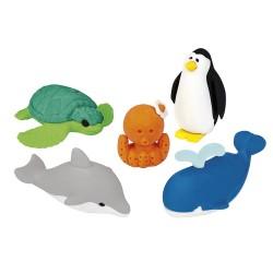 Radiererset Bunte Tierwelt - Ozean