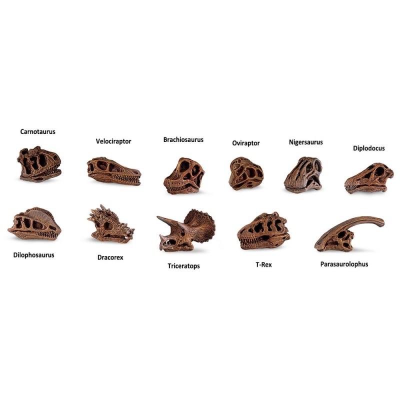 Dinosaurier Schädel - Set mit 11 kleinen handbemalten Figuren
