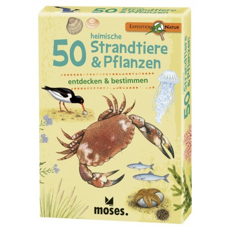 Expedition Natur 50 heimische Strandtiere & Pflanzen