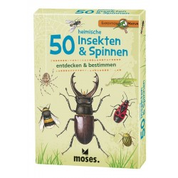 Expedition Natur 50 heimische Insekten & Spinnen