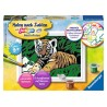 Malen nach Zahlen Malset Süsser Tiger