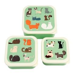 Znünibox Set Nine Lives Katzen von Rex London