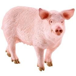 Schleich Tier Schwein stehend
