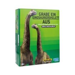 Brachiosaurus Dinosaurier ausgraben