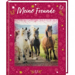 Freundebuch Pferdefreunde mit 3D Bild