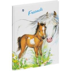 Freundebuch Pferd mit Fohlen